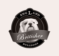 Bulldog Club logo design